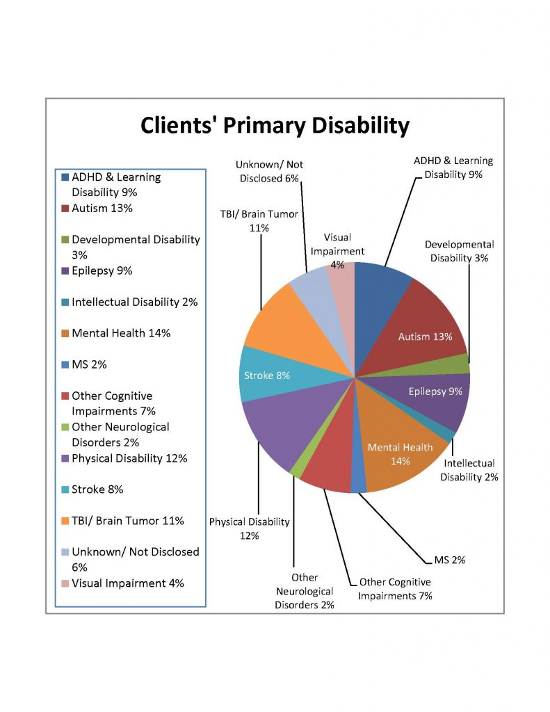 2018 Annual Report - Client disability graphic