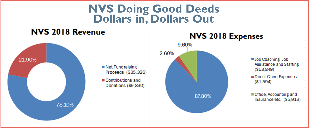 NVS dollars in dollars out